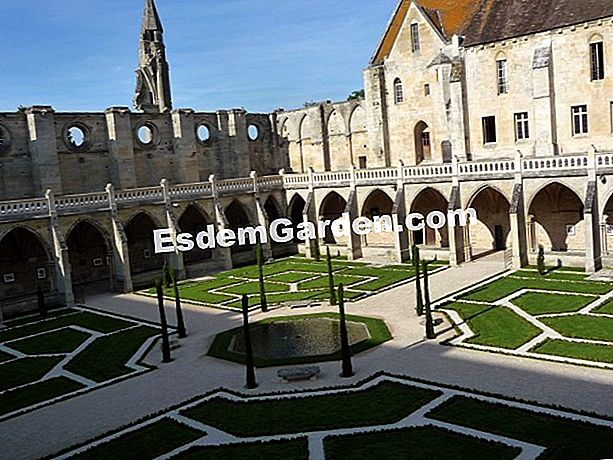 Taman Cloister dari Royaumont Abbey, Jun 2010, foto Alain Delavie
