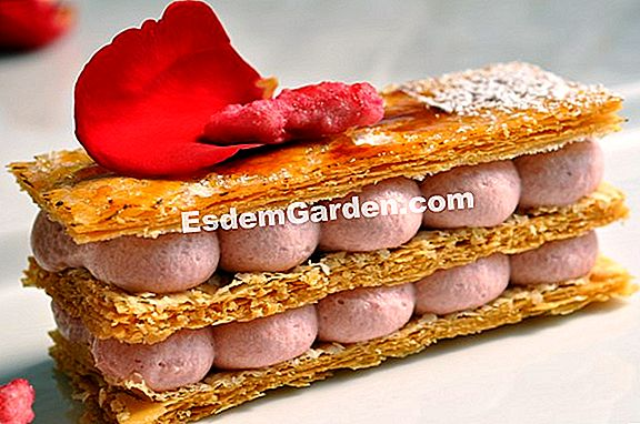 Mille-feuille dari 'Rose de France'