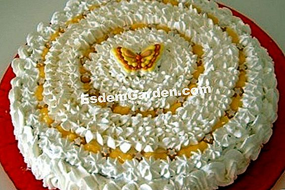 Genoise con clementinas