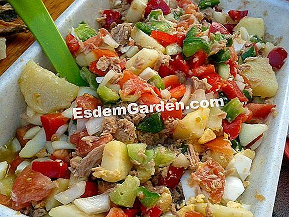 Cocinar Pimientos: Ideas De Recetas 🌿 Todo Sobre Jardinería Y ...