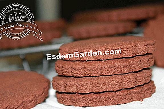 Galletas de chocolate (sin gluten)