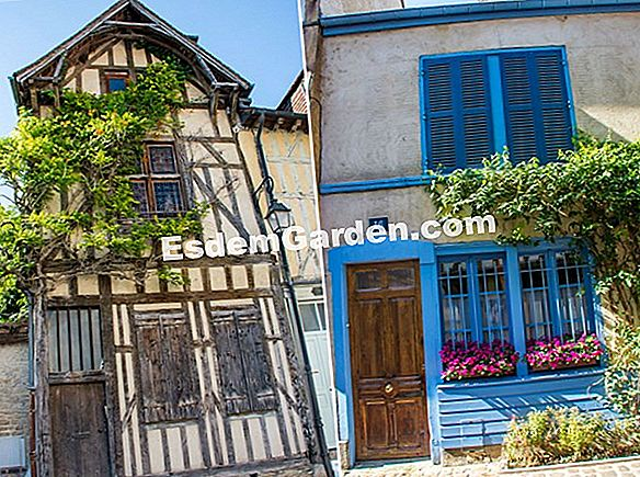 The Dyers 'Garden a Troyes (10)