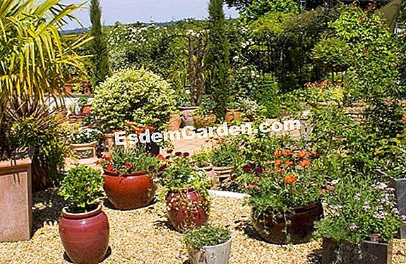 Wonderbaarlijk Een Mediterrane Tuin 🌿 Alles Over Tuinieren En Tuinontwerp - 2020 XK-42
