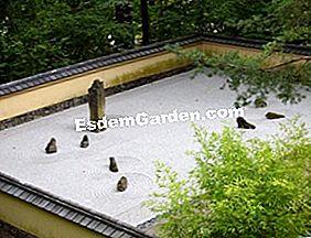 Zen Tuin Aanleggen : Creëer een zen tuin advies en onderhoud 🌿 alles over tuinieren