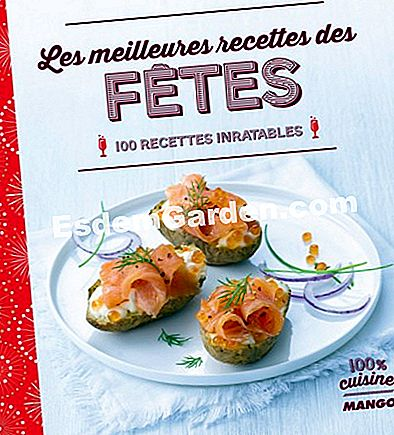 Book Cover Best Holiday Recipes di Mango Editions